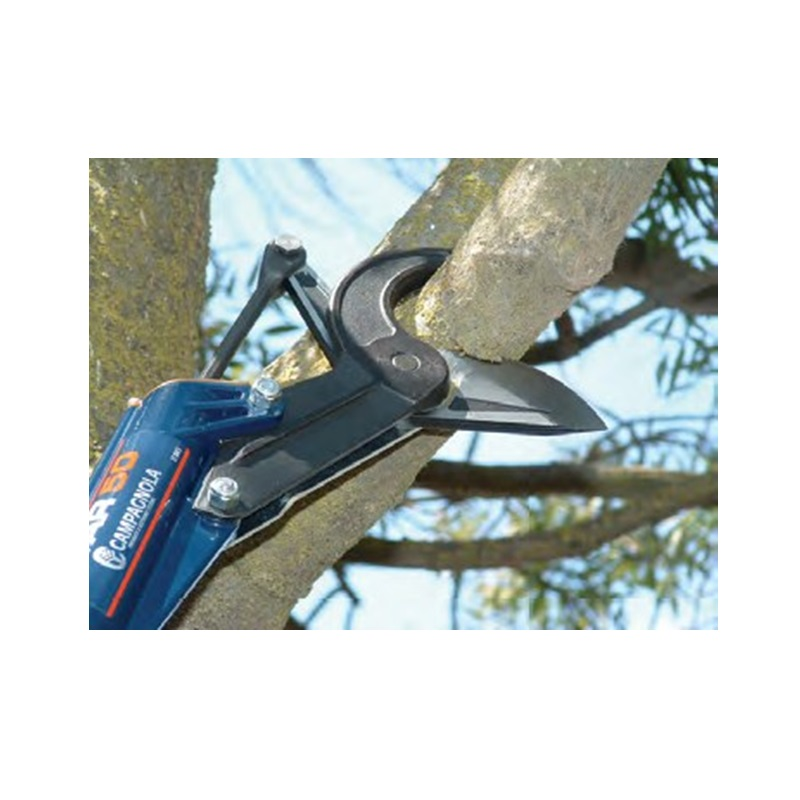 Star 50 Pruner - 2' Pole